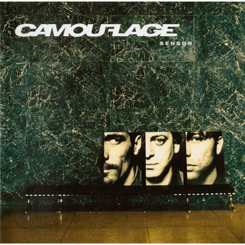 20030715_Camouflage–Sensor_Cover_500x500